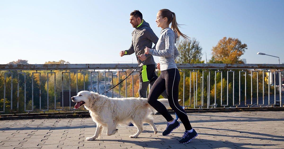 10 вещей, которые нужно сделать в этом году, чтобы вести здоровый образ жизни